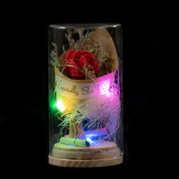 EVERMORE Red Rose Dried flowers With Natural Color Thread and Letter 4L Multicolor LED Bare Wire Glass Cover Light