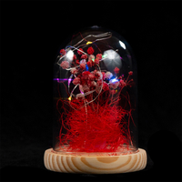 EVERMORE Red Open-herding With Thread 8L Multicolor LED Bare Wire Glass Cover Light